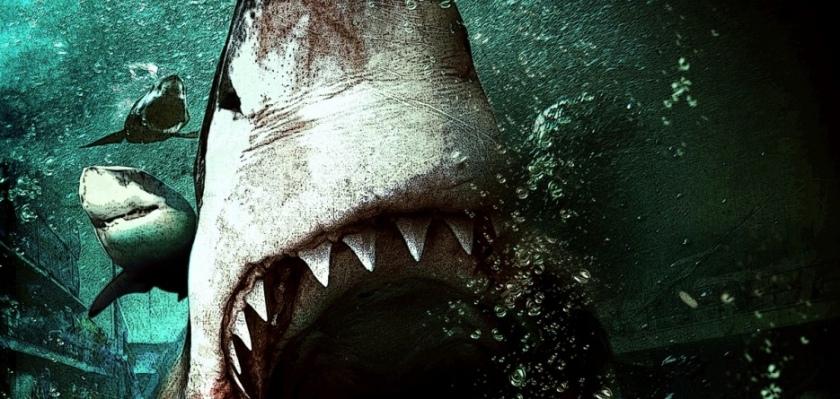 Des requins affamés piégés dans un supermarché après un tsunami ? C'est BAIT et c'est génial.