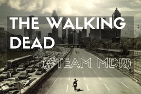 The Walking Dead, probablement une des meilleures séries de tous les temps (juste après Dexter, quand même).