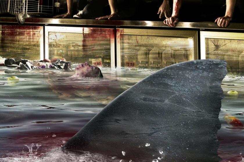 Bait 3D, le film qui piège humains et requins blancs affamés dans un supermarché.