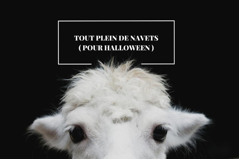 Halloween et le top trois des derniers navets que j'ai vus en matière de cinéma d'horreur.
